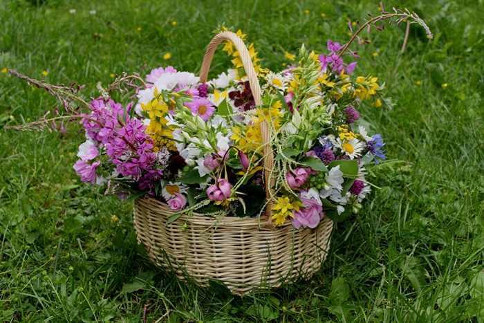 Gift basket business idea