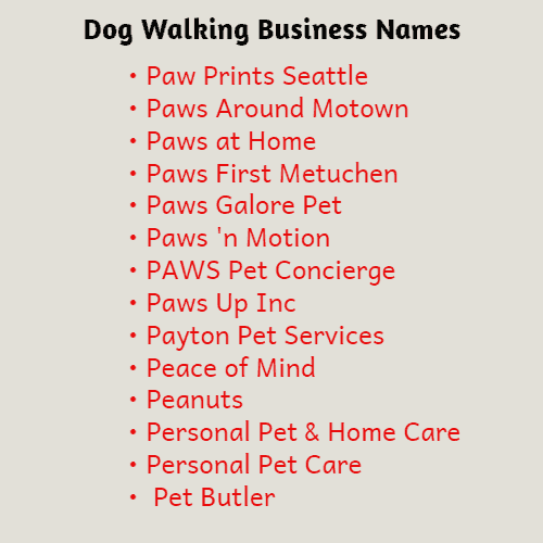 creative dog business names