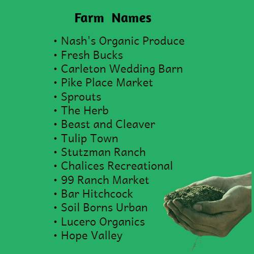 Catchy and Funny Farm Names