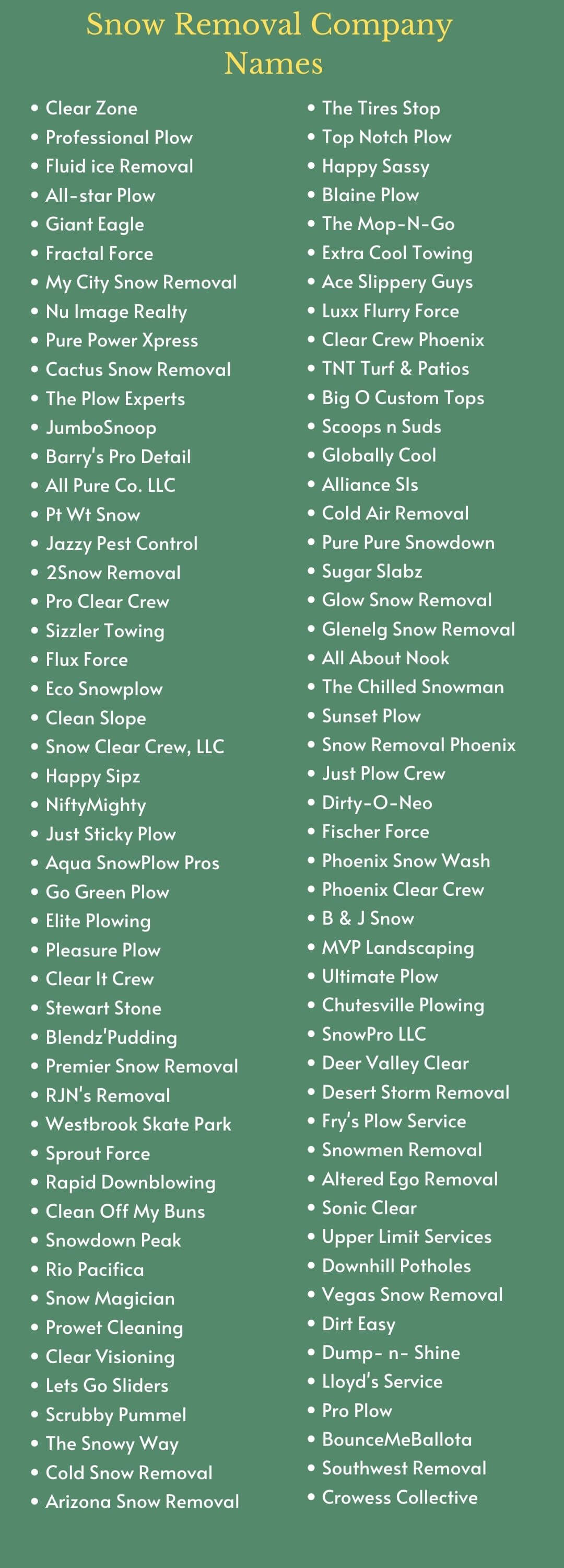 Snow Removal Company Names infographic